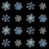 Fiocchi di neve reali isolati su fondo nero Fotografia Stock