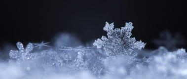 Fiocchi di neve su neve Fotografia Stock Libera da Diritti