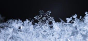 Fiocchi di neve su neve Fotografia Stock