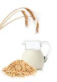 Fiocchi e latte dell'avena Fotografia Stock Libera da Diritti