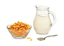 Fiocchi e latte di avena Immagine Stock Libera da Diritti