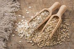 Fiocchi e semi dell'avena Fotografia Stock