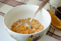 Fiocchi in un piatto profondo, riempito di latte Fotografia Stock Libera da Diritti