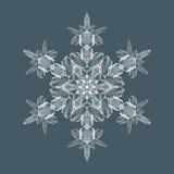 Fiocco decorativo della neve Immagini Stock