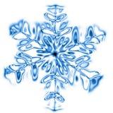 Fiocco della neve Fotografie Stock Libere da Diritti