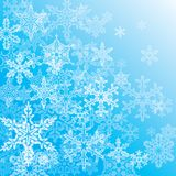 Fiocco di neve Immagine Stock