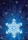 Fiocco di neve Fotografie Stock