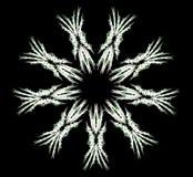 Fiocco di neve astratto Immagine Stock