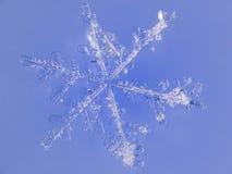 Fiocco di neve con fondo blu Fotografia Stock Libera da Diritti
