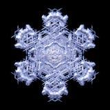 Fiocco di neve decorativo di inverno su fondo nero royalty illustrazione gratis