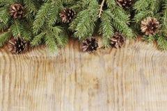 Fiocco di neve del cono del fondo del ramo della carta Immagini Stock