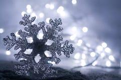 Fiocco di neve ghiacciato di inverno Immagini Stock