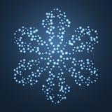 Fiocco di neve luminoso della stella. Fotografie Stock Libere da Diritti