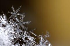 Fiocco di neve a macroistruzione Fotografie Stock