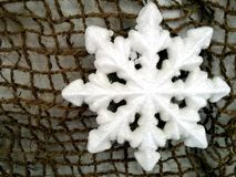 Fiocco di neve nella rete Fotografie Stock