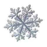 Fiocco di neve reale isolato su fondo bianco Immagini Stock Libere da Diritti