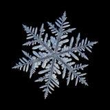 Fiocco di neve reale isolato su fondo nero Fotografia Stock
