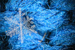 Fiocco di neve su priorità bassa blu Immagine Stock
