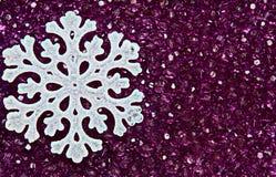 Fiocco di neve sui branelli viola Fotografie Stock