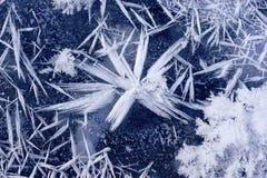 Fiocco di neve sul ghiaccio. Immagine Stock
