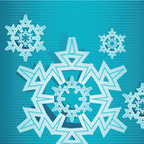 Fiocco due della neve Immagine Stock