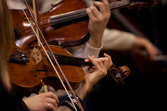 Fiol i händerna av musiker arkivbild