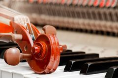 Fiolen trimmar körhuvudet på pianotangenterna arkivbild