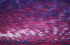 fioletowy różowe niebo Obraz Stock