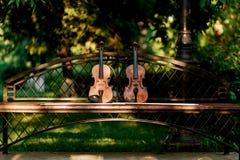 Fiolmusikinstrument av orkesteren Fioler i parkera på bänken royaltyfria foton