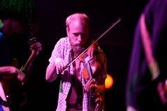 Fiolspelaren av Darren Hayman & försökavskiljandet (musikband) utför på den Heineken Primavera ljudfestivalen 2014 Royaltyfria Bilder