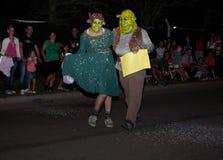 Fiona och Shrek maskeringar Arkivbilder