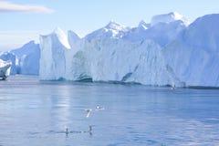 Fiord dell'iceberg Fotografia Stock Libera da Diritti