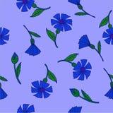 Fiordalisi blu del modello su un fondo blu illustrazione di stock
