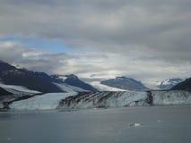 Fiorde Alaska da faculdade da geleira de Harvard Grande geleira que desliza no Oceano Pacífico em Alaska imagens de stock royalty free