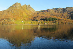 Fiorde norueguês em cores do outono Imagens de Stock