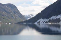 Fiordi norvegesi Immagini Stock