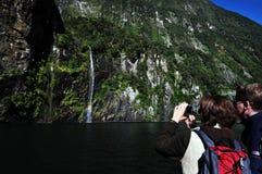 Fiordland新西兰 免版税库存图片
