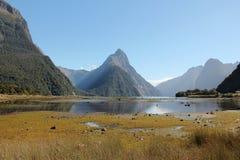 fiordland milford主教国家新的公园峰顶听起来西兰 免版税图库摄影