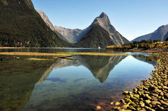 Fiordland National Park Royalty Free Stock Images