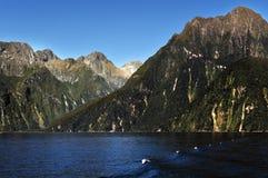 Fiordland nationalpark Arkivfoto