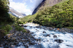 Fiordland - New Zealand Stock Photos