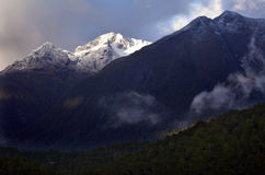 Fiordland - New Zealand Royalty Free Stock Photo