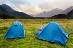 Fiordland - New Zealand. Two tents in campsite in Fiordland, New Zealand Royalty Free Stock Photography