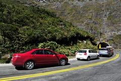 Fiordland Nova Zelândia Foto de Stock