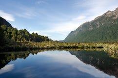 Fiordland - Nova Zelândia imagens de stock