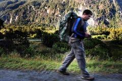 Fiordland Nowa Zelandia Zdjęcia Stock