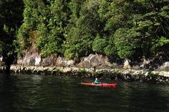 Fiordland Nueva Zelanda Imágenes de archivo libres de regalías