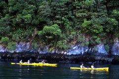 Fiordland Nueva Zelanda Fotografía de archivo