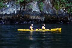 Fiordland Nya Zeeland Arkivfoton
