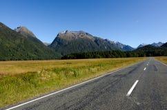 Fiordland - Nya Zeeland arkivfoto